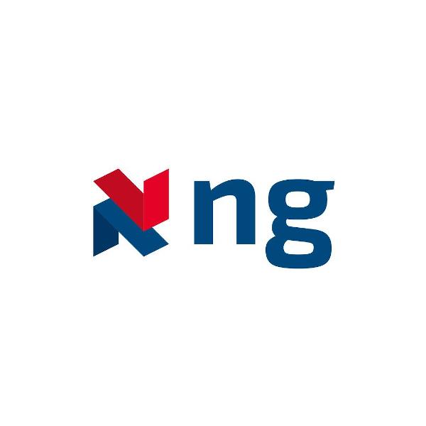 NG Engineering Group